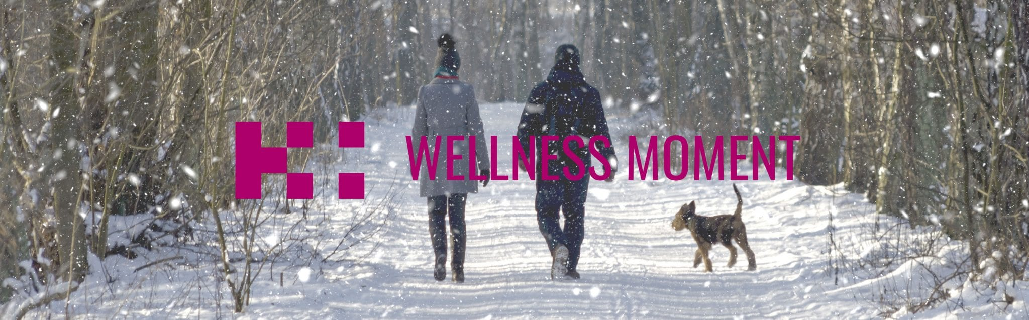 winter wellness - healthy holiday